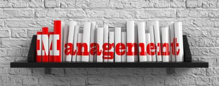 Managing Your Manager: Defining Outstanding Work